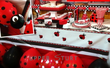 Lady Bug Party Theme