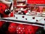 Lady Bug Party Theme